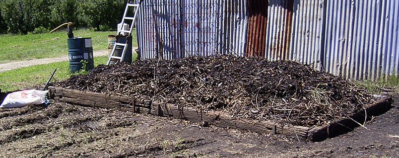Mulch heap from woody waste